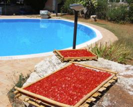 Salento-Pomodori-secchi -Offerte b&b luglio 2017 Salento
