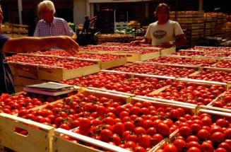Io Mercato Orto Frutticolo di Taviano