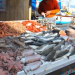 Il pesce fresco di Gallipoli