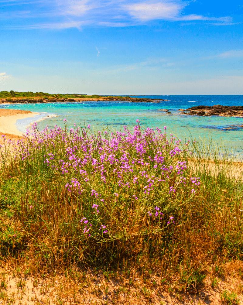 Spiaggia Lido Marini 1